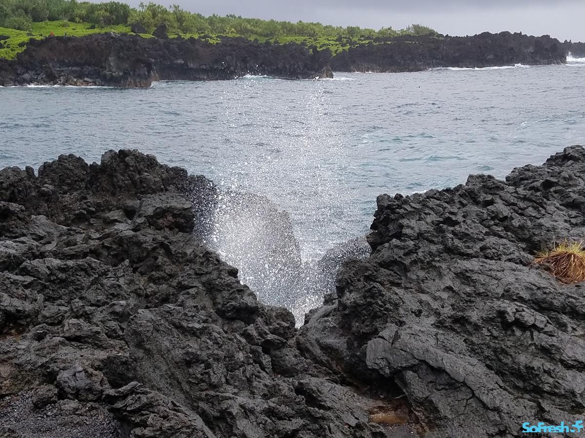 Aloha State of Mind: Maui - SoFresh